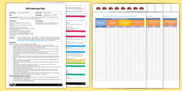 EYFS Save Our School Adult Input Plan and Resource Pack to Support Teaching on What the Ladybird Heard