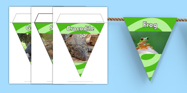Jungle and Rainforest Display Photo Bunting - jungle, bunting