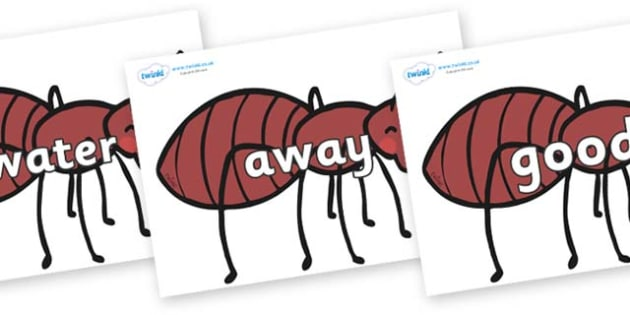 Next 200 Common Words on Ants - Next 200 Common Words on  - DfES Letters and Sounds, Letters and Sounds, Letters and sounds words, Common words, 200 common words