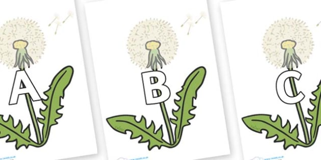 A-Z Alphabet on Dandelion Seeds - A-Z, A4, display, Alphabet frieze, Display letters, Letter posters, A-Z letters, Alphabet flashcards