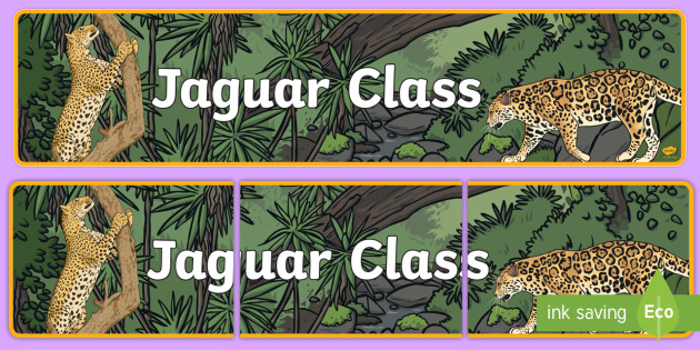 Jaguar Themed Classroom Display Banner - Themed banner, banner, display banner, Classroom labels, Area labels, Poster, Display, Areas