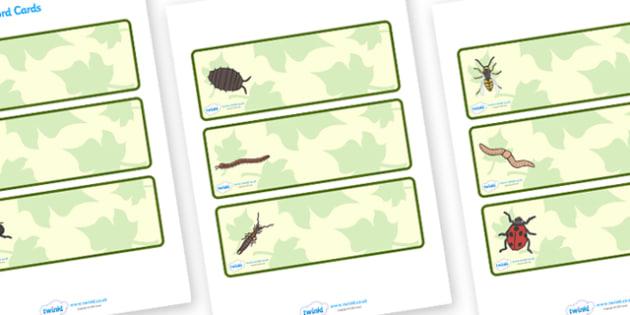 Editable Drawer - Peg - Name Labels (Minibeasts) - Minibeast themed Label Templates, minibeasts, Resource Labels, Name Labels, Editable Labels, Drawer Labels, Coat Peg Labels, Peg Label, KS1 Labels, Foundation Labels, Foundation Stage Labels, Teachin