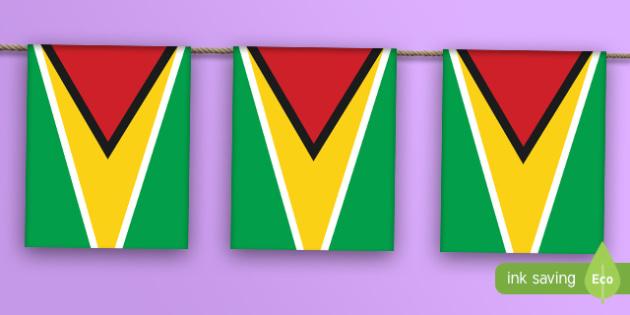 Guyana Flag Bunting - guyana, flag, display bunting, display, bunting