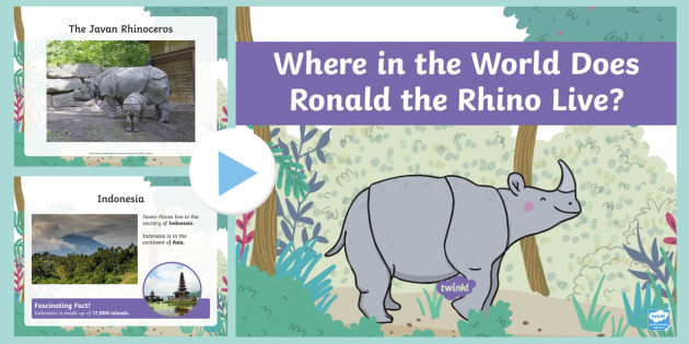 Where in the World Does Ronald the Rhino Live PowerPoint  KS1