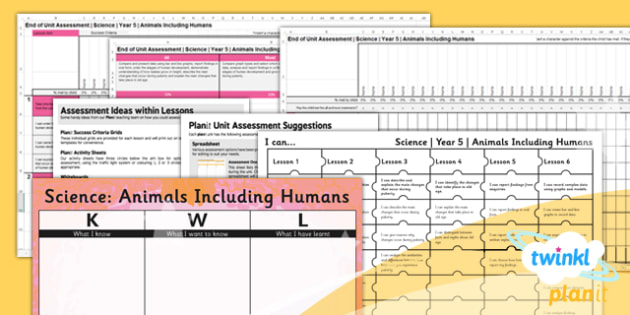 Science: Animals Including Humans Year 5 Unit Assessment Pack