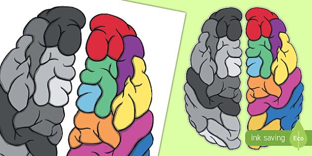 Large Display Growth Mindset Brain - display, growth mindset, brain