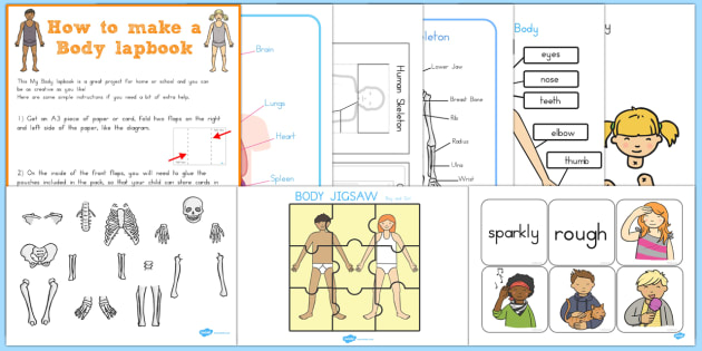My Body Lapbook Creation Pack - bodies, parts of the body, human