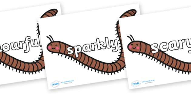 Wow Words on Millipedes - Wow words, adjectives, VCOP, describing, Wow, display, poster, wow display, tasty, scary, ugly, beautiful, colourful sharp, bouncy
