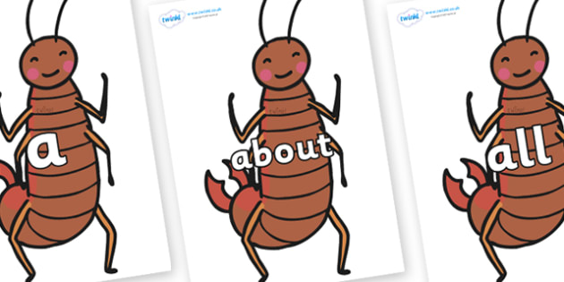 100 High Frequency Words on Earwigs - High frequency words, hfw, DfES Letters and Sounds, Letters and Sounds, display words