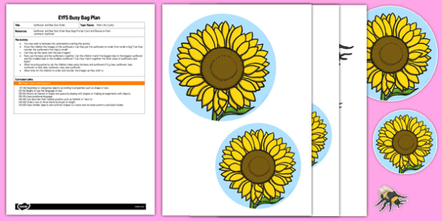 Sunflower and Bee Size Order EYFS Busy Bag Plan and Resource Pack - pattern, maths