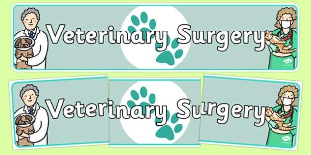 Veterinary Surgery Display Banner - veterinary surgery, vets, display banner, banner, banner for display, display header, header, header for display