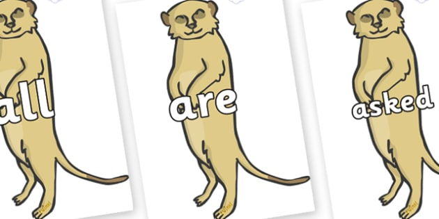 Tricky Words on Meerkats - Tricky words, DfES Letters and Sounds, Letters and sounds, display, words