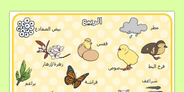 بساط كلمات الربيع - الربيع، مفردات، وسائل تعليمية، موارد المعلم