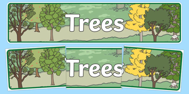 Trees Display Banner - trees, woodland, display, banner, sign, poster, woods, forest, birds, leaf, fox, deere, bark, fern