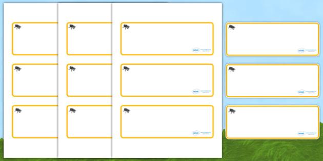 Beetle Themed Editable Drawer-Peg-Name Labels (Blank) - Themed Classroom Label Templates, Resource Labels, Name Labels, Editable Labels, Drawer Labels, Coat Peg Labels, Peg Label, KS1 Labels, Foundation Labels, Foundation Stage Labels, Teaching Label