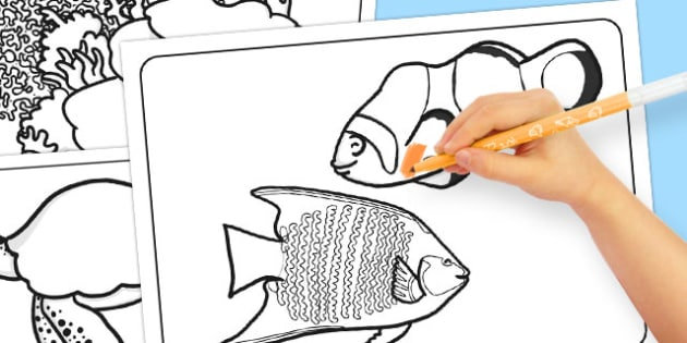 Great Barrier Reef Colouring Pages - australia, barrier reef