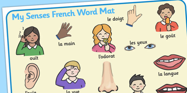 My Senses KS1 Body Parts Word Mat French - word mat, body, senses