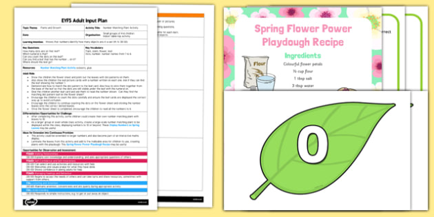 Number Matching Plant EYFS Adult Input Plan and Resource Pack