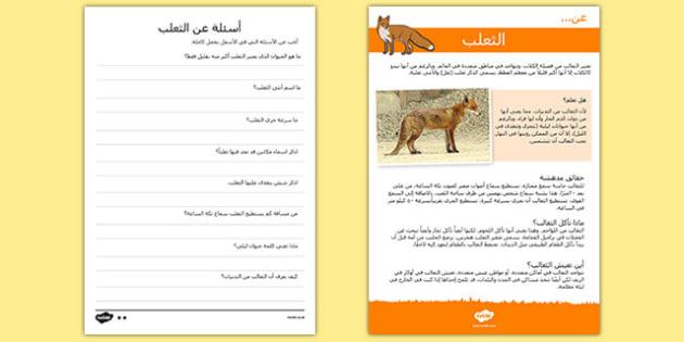 القراءة والاستيعاب عن الثعلب - الثعلب، القراءة، استماع، مواد - arabic, Reading comprehension, fox, find, locate, read, comprehend, fact, title, fact file, information, question