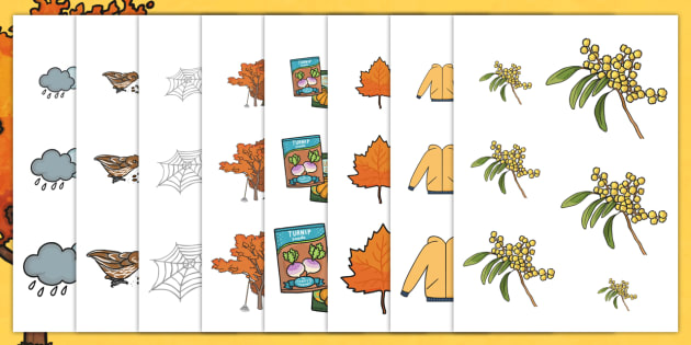 Autumn Size Ordering Worksheet - size order, order, seasons