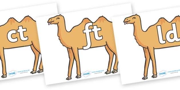 Final Letter Blends on Camels - Final Letters, final letter, letter blend, letter blends, consonant, consonants, digraph, trigraph, literacy, alphabet, letters, foundation stage literacy