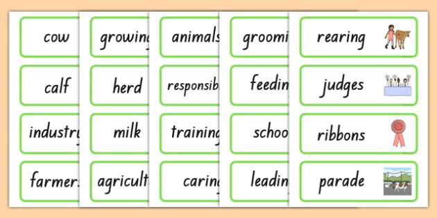 Calf Club Word Cards
