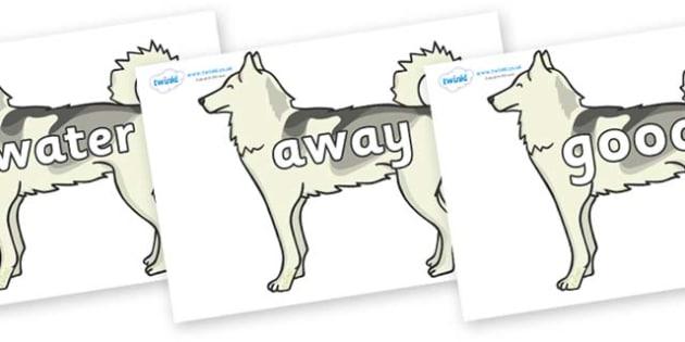 Next 200 Common Words on Huskies - Next 200 Common Words on  - DfES Letters and Sounds, Letters and Sounds, Letters and sounds words, Common words, 200 common words