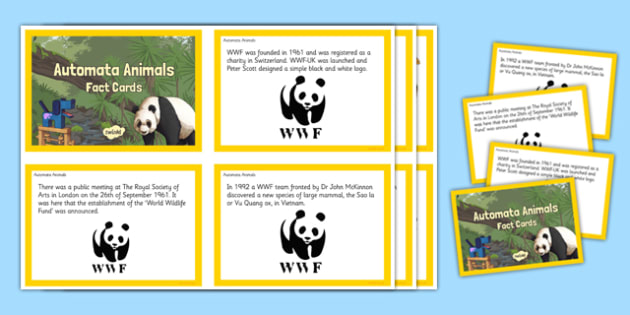 Automata Animals - Fact Cards - display, automata animals, design and technology