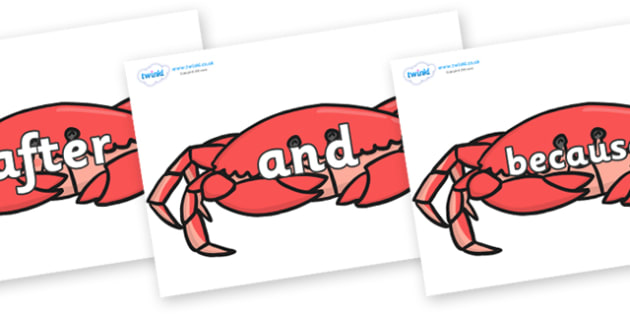 Connectives on Crabs - Connectives, VCOP, connective resources, connectives display words, connective displays