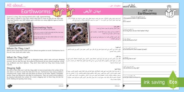 Earthworm Reading Comprehension Arabic/English - Earthworm Reading Comprehension - earthworm, reading, comprehension, comprehesion, comprehnsion, rea