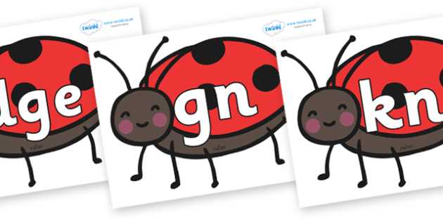 Silent Letters on Ladybirds - Silent Letters, silent letter, letter blend, consonant, consonants, digraph, trigraph, A-Z letters, literacy, alphabet, letters, alternative sounds