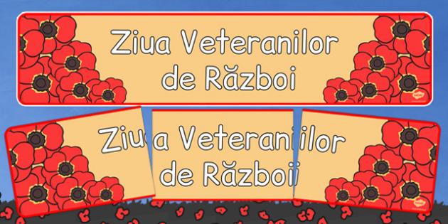 Ziua Veteranilor de Război - Banner