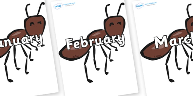 Months of the Year on Ants - Months of the Year, Months poster, Months display, display, poster, frieze, Months, month, January, February, March, April, May, June, July, August, September