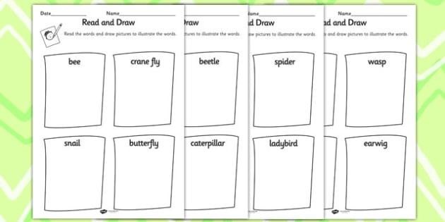 Minibeast Read and Draw Worksheet - minibeasts, draw, animals