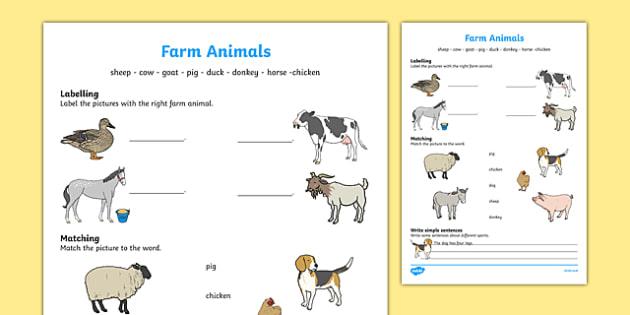 Farm Animals Activity Sheet, worksheet