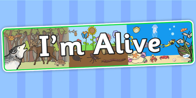 Im Alive Display Banner - I am alive, IPC, IPC display banner, I am alive display banner, I am alive banner, I am alive display, I am alive IPC