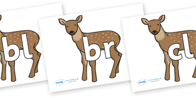 Initial Letter Blends on Fawns - Initial Letters, initial letter, letter blend, letter blends, consonant, consonants, digraph, trigraph, literacy, alphabet, letters, foundation stage literacy