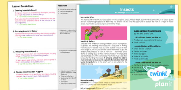 Art: Insects LKS2 Planning Overview