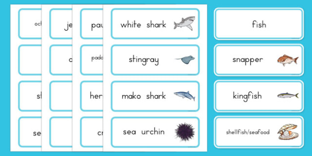 Under the Sea Word Cards