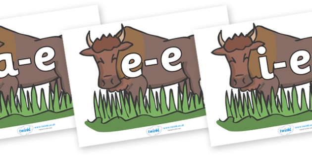 Modifying E Letters on Bison - Modifying E, letters, modify, Phase 5, Phase five, alternative spellings for phonemes, DfES letters and Sounds