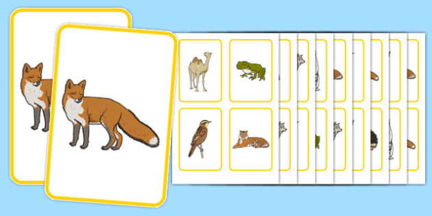 Animal Snap Game - games, turn taking, social communication, working in a group , friendship