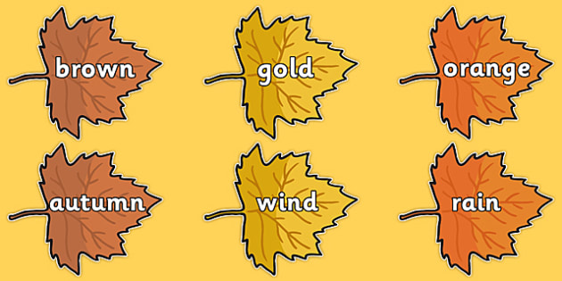 Autumn Words on Leaves - seasons, weather, display, topic words