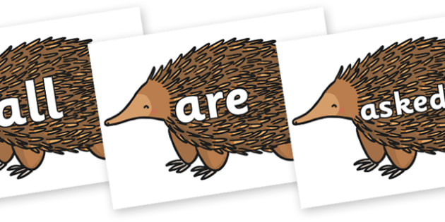 Tricky Words on Echidna - Tricky words, DfES Letters and Sounds, Letters and sounds, display, words