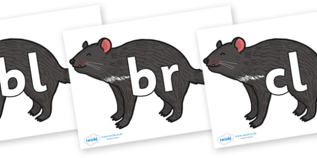Initial Letter Blends on Tasmanian Devil - Initial Letters, initial letter, letter blend, letter blends, consonant, consonants, digraph, trigraph, literacy, alphabet, letters, foundation stage literacy