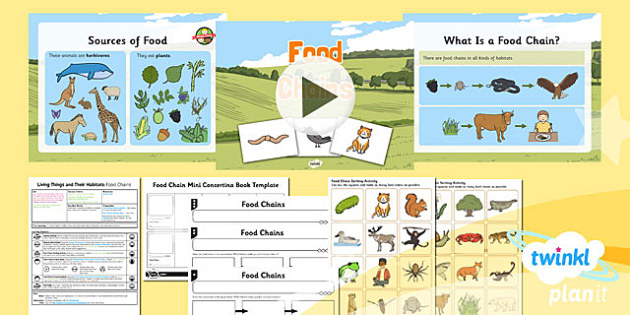 PlanIt - Science Year 2 - Living Things and Their Habitats Lesson 6: Food Chains - science, ks1, key stage 1, planning, resources, topic, nature, animals, places, homes, display, activities, predators, prey, herbivore, omnivore, carnivore,