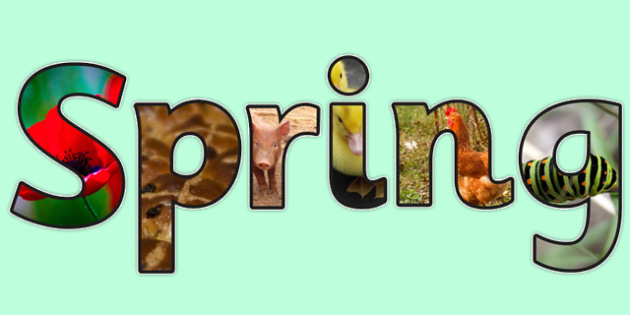 Spring Photo Display Lettering - spring, lettering, letters