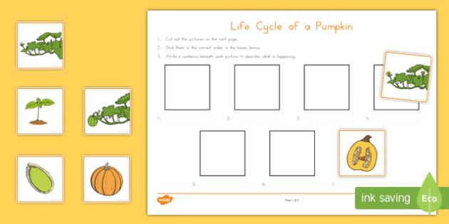 Life Cycle of a Pumpkin Writing Activity Sheet