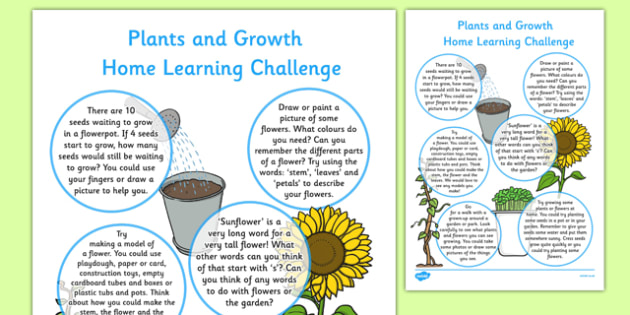 Plants and Growth Home Learning Challenges Reception FS2 - EYFS, homework, Early years, flowers, growing