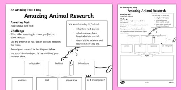 Amazing Animal Research Activity Sheet, worksheet