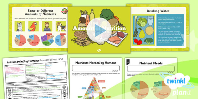 PlanIt - Science Year 3 - Animals Including Humans Lesson 2: Amount of Nutrition Lesson Pack